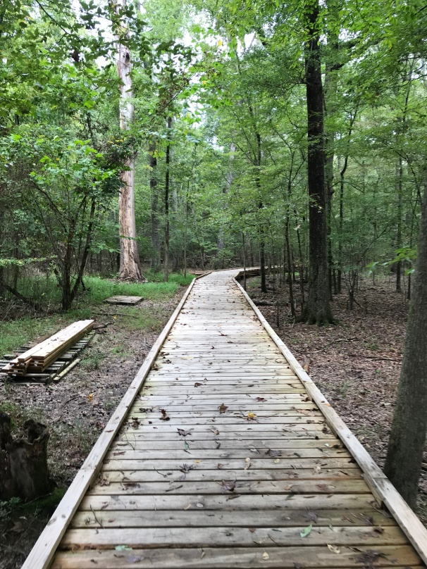 Run Amok Chattanooga Harrison Bay Awesmesauce Ultramarathon Trail Race